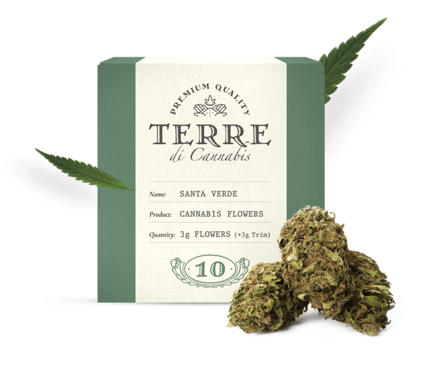 A box of CBD cannabs flowers from the brand Terre Di Cannabis