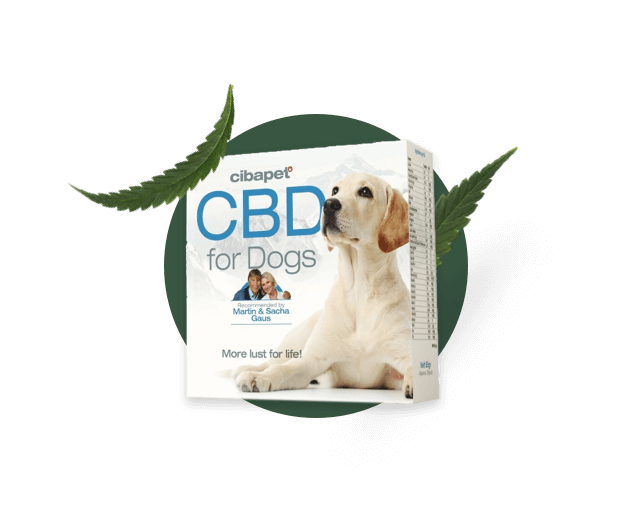 Pet CBD capsules at hempoilshop.gr