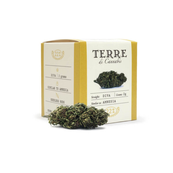 Terre Di Cannabis Diva - 2gr. - photo of pack and bud