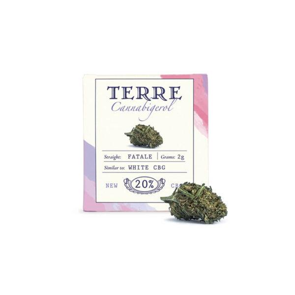 Terre Di Cannabis Fatale CBG - 2gr. - product photo