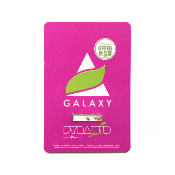 Pyramid Seeds | Θηλυκοί Σπόροι Κάνναβης - Galaxy - 3+1τεμ - συσκευασία σπόρων