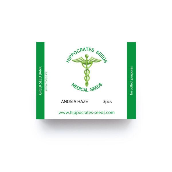 Hippocrates Seeds | Anosia Haze Auto αυτόματοι σπόροι κάνναβης.