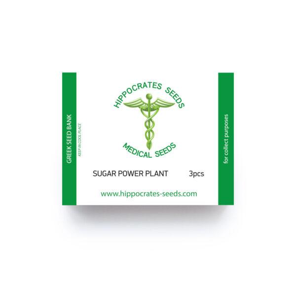 Hippocrates Seeds Sugar Power Plant Auto αυτόματοι σπόροι κάνναβης